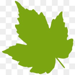 260x260 A Green Leaf, Vector Png, Leaf, Green Leaves Png And Vector