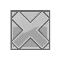200x200 Guild Wars Wiki Talkformattingprofessions