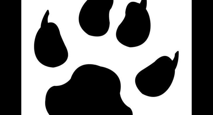 728x393 Bear Paw Print Stencil Bear Paw Stencil Free Download Clip Art