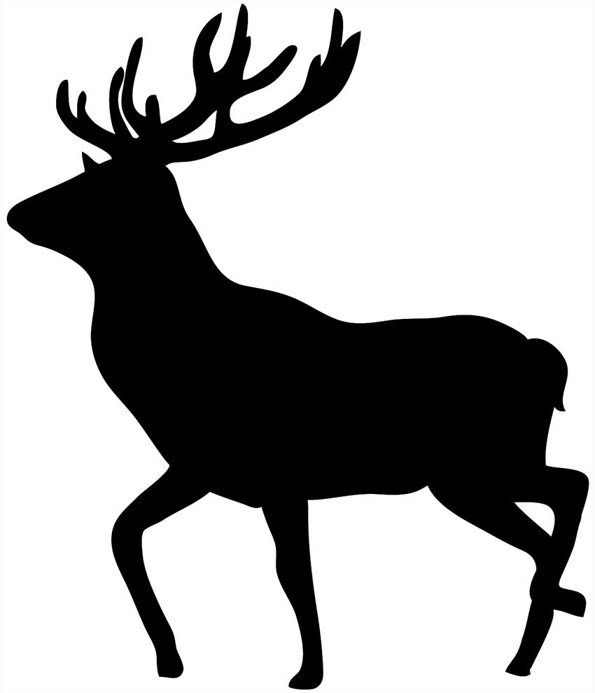 850x989 Best Hd Grizzly Bear Silhouette Vector Animal Deer Cdr