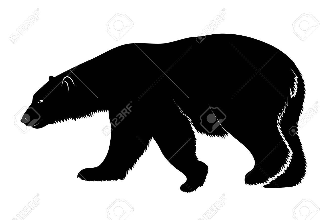 1300x870 Polar Bear On A White Background Royalty Free Cliparts, Vectors