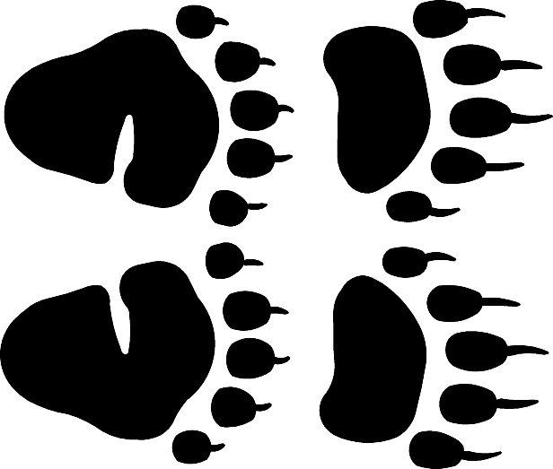 616x523 Black Bear Clipart Footprint