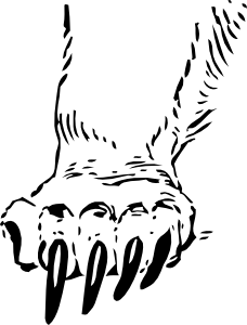 228x300 Grizzly Bear Paw Clip Art