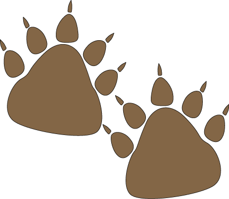 463x401 Polar Bear Clipart Grizzly Bear