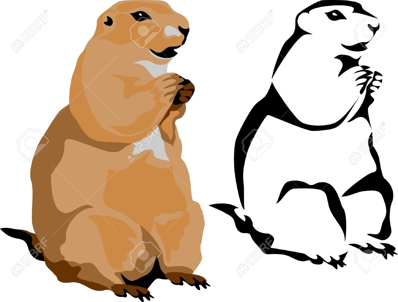 1300x989 1,162 Groundhog Stock Illustrations, Cliparts And Royalty Free