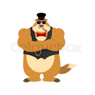 320x320 Groundhog Day Stock Vector Colourbox