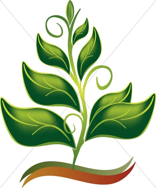 507x612 Growing In The Spirit Color Clipart Nature Clipart