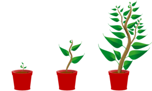 298x180 Growing Trees Clip Art