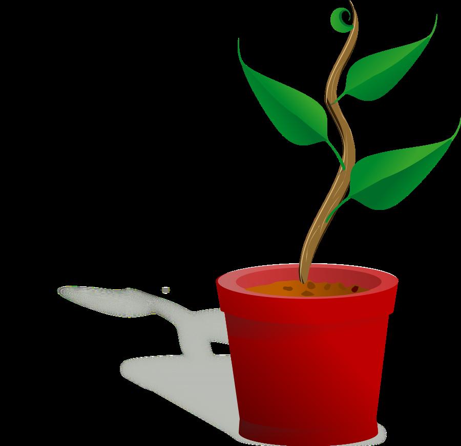 900x871 Growing Plant Clip Art Clipartfest 3