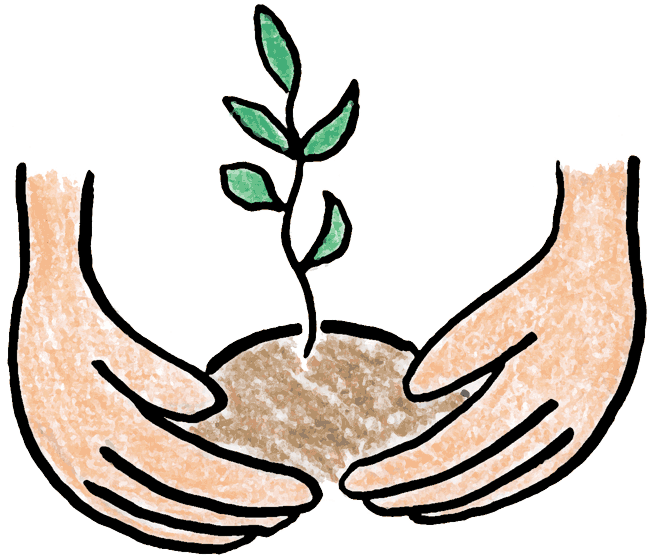 650x558 Plant Clipart Tree Growing
