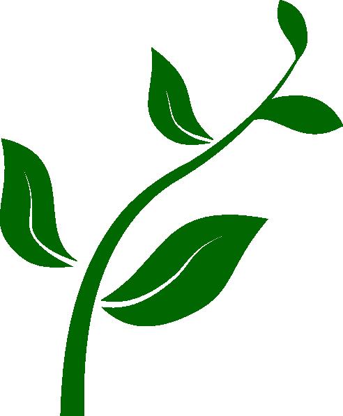 492x597 Growing Plant Clip Art