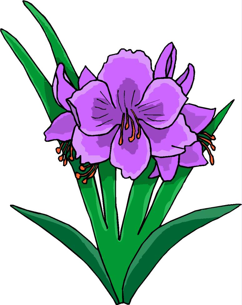 775x977 Plants And Flowers Clipart