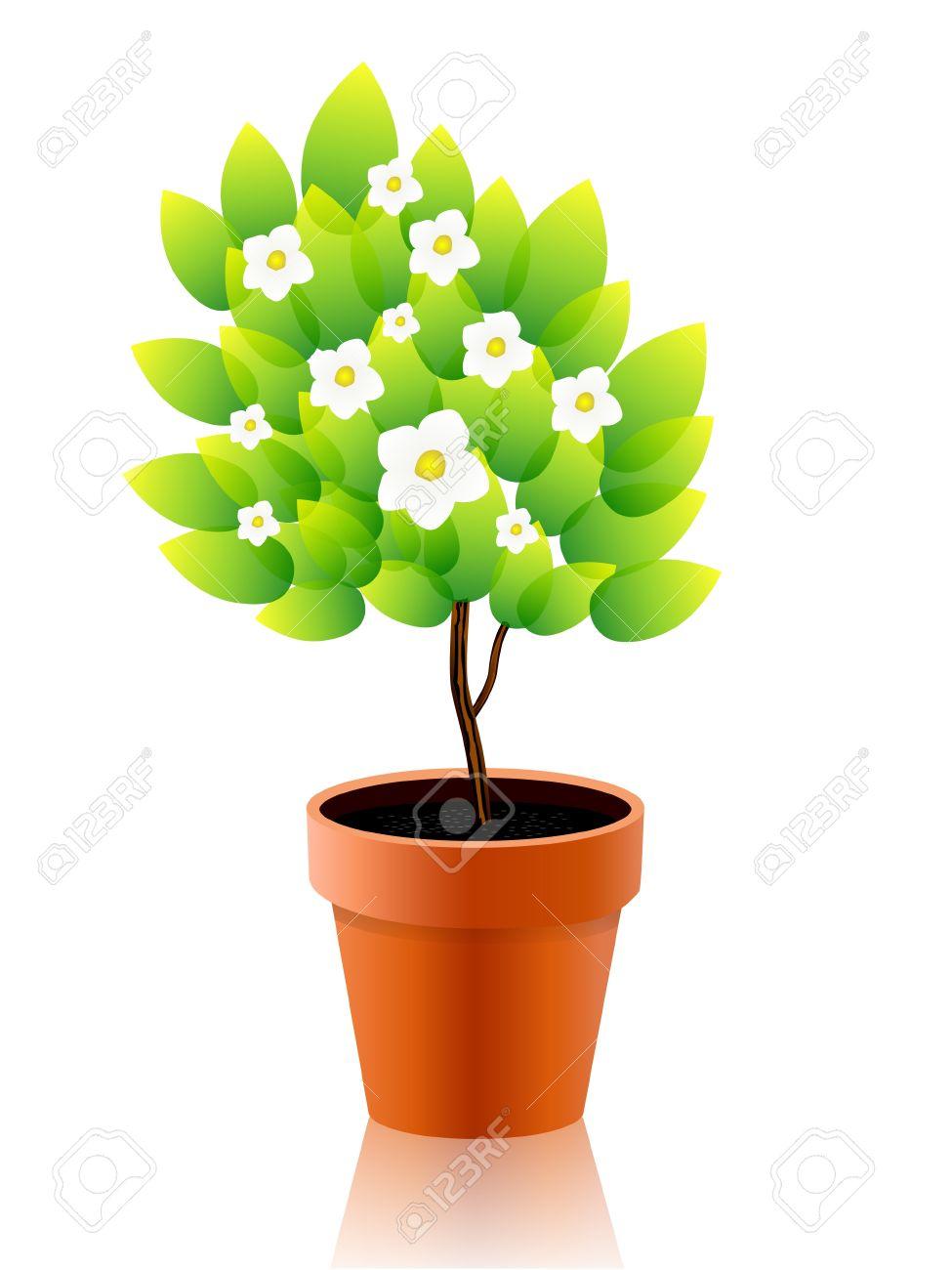975x1300 Pot Plant Clipart Flower Growing