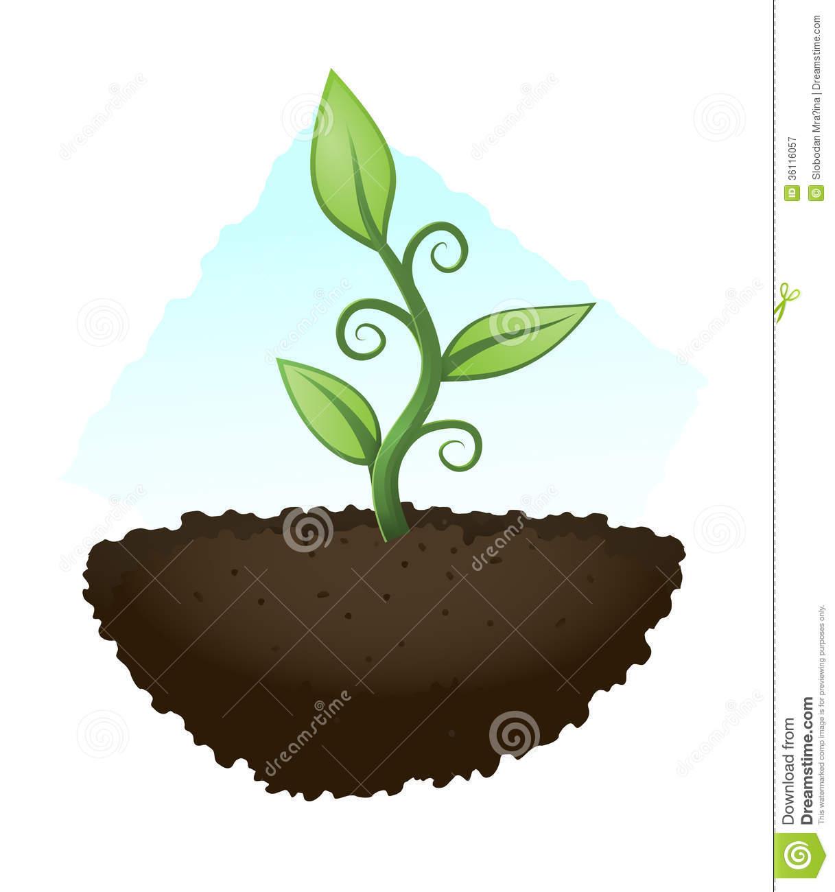 1217x1300 Soil Clipart Plant