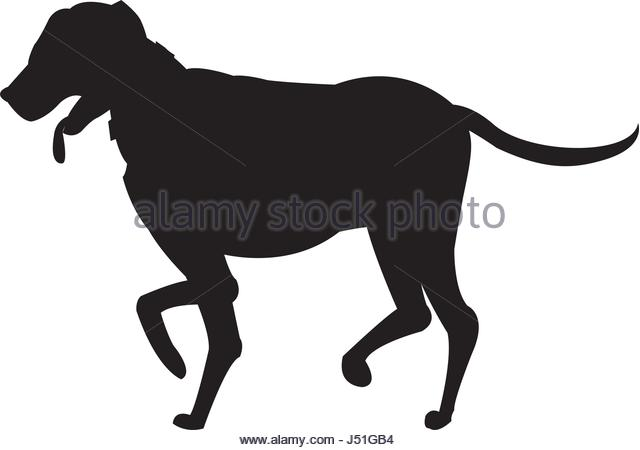 640x450 Dog Walking Stock Vector Images