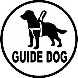 250x250 14 Best Guide Dogs Worldwide Images Autism