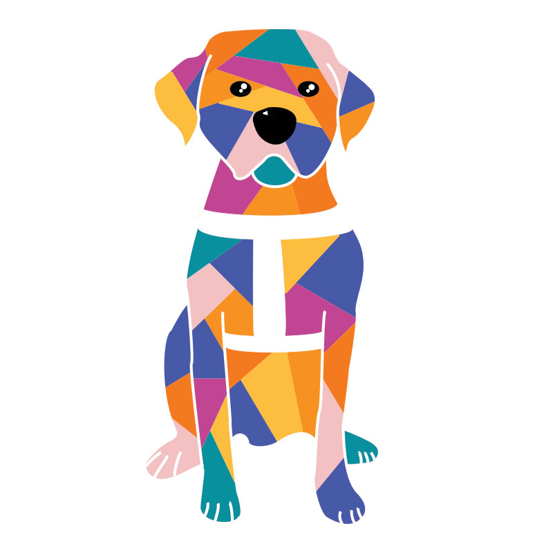 800x800 Unlikely Art Guide Dog Collection Dogs Take Centre Stage In New