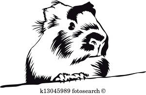 300x195 Guinea Pig Clip Art Royalty Free. 337 Guinea Pig Clipart Vector