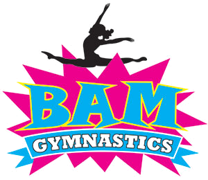 300x260 Gymnastics Classes