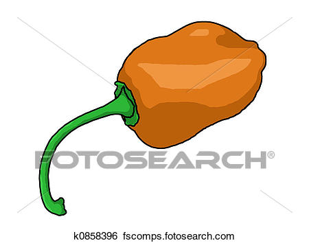450x354 Stock Illustration Of Habanero Pepper Illustration K0858396