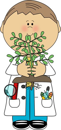 259x550 Botany Science Clipart Amp Botany Science Clip Art Images