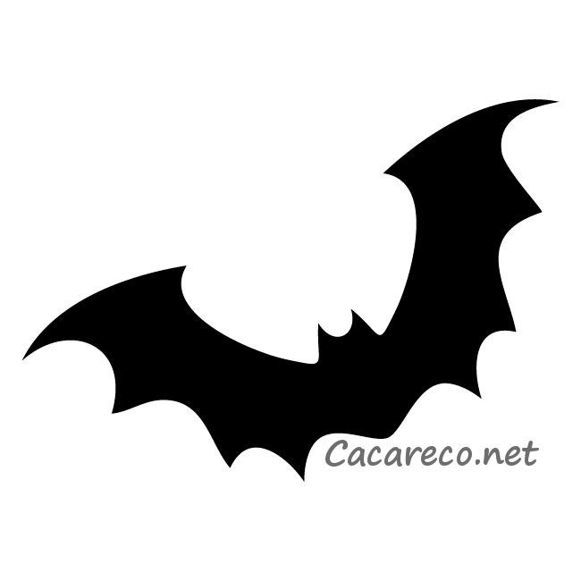 650x650 390 Best Bats Images Bats, Gift Boxes And Horror