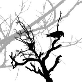 350x350 Halloween Clipart Raven In A Dead Tree