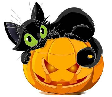 370x320 Halloween Images Black Cat Empowermephoto