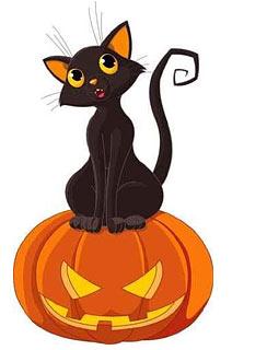 244x320 Images Of Halloween Black Cat