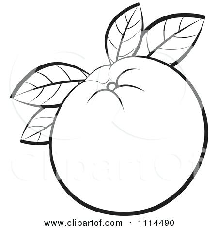 450x470 Free Clipart Images 7 Best Images Of Free Printable Line Border