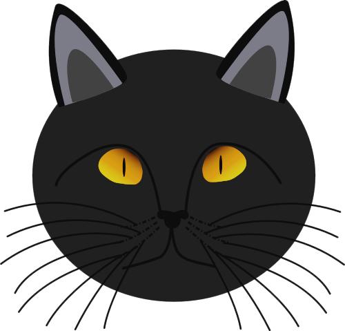 500x479 Black Cat Face