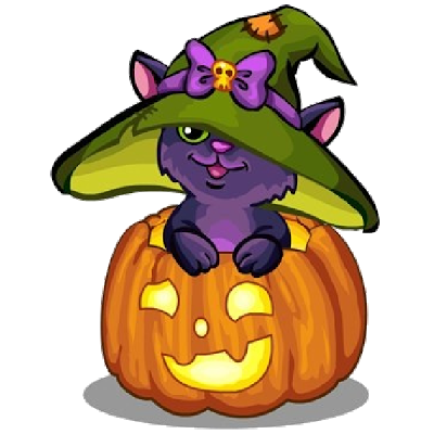 400x400 Cute Halloween Cat Photo Album