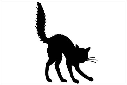 528x352 Halloween Cat Clipart Black And White
