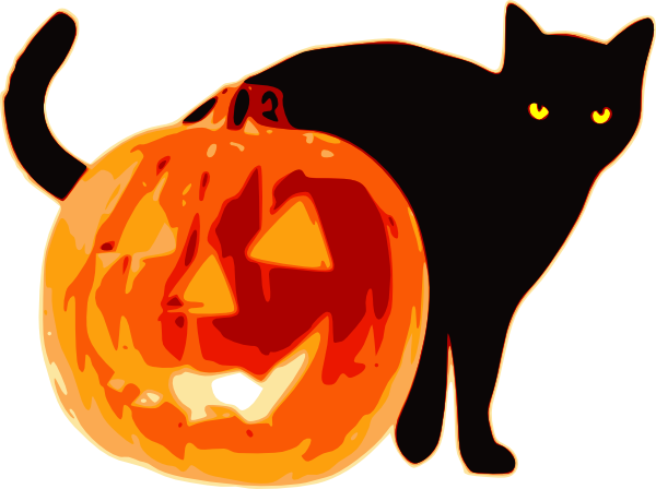 600x448 Halloween Cat With Pumpkin Hi