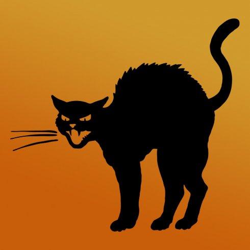 490x490 Mean Cat Halloween Stencil