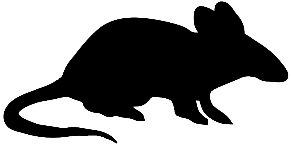 1000x510 Mouse Clipart Silhouette