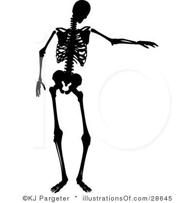 400x420 Skeleton Clipart 3 Clipart Panda