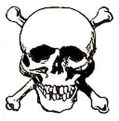 244x250 Skull Halloween Clip Art Halloween Amp Holidays Wizard