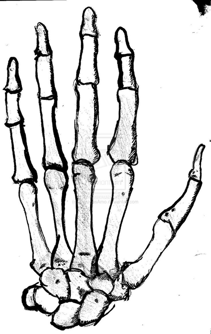 736x1164 The Best Skeleton Hands Drawing Ideas Skeleton