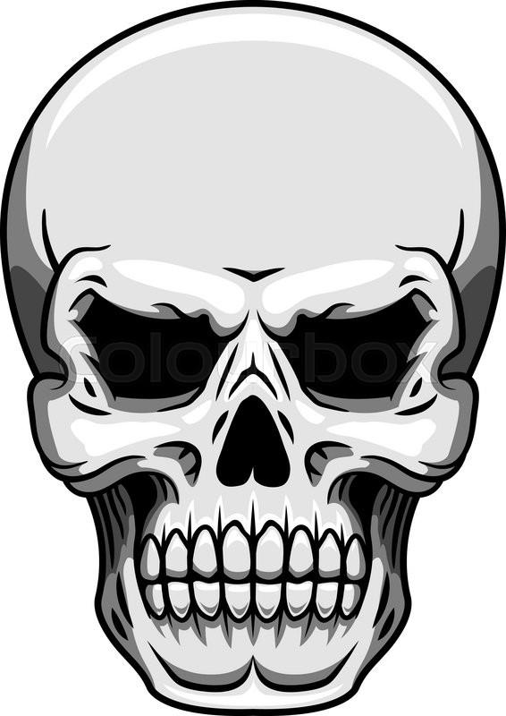 566x800 Gray Human Skull On White Background For Halloween, Heraldic