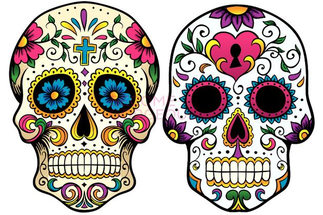 630x420 Skull Patterns