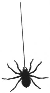 163x300 Halloween Spider Clip Art Halloweenfunky
