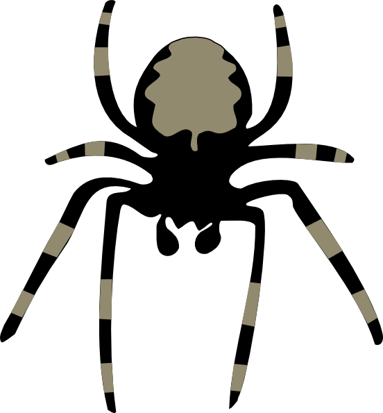 552x595 Cute Halloween Spider Clipart Free Images