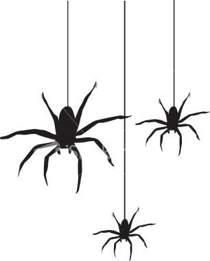 306x380 Spider Clipart
