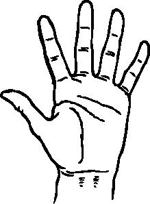 219x298 Hand 2 Clip Art