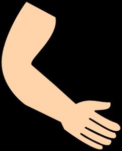 240x298 Arm Amp Hand Clip Art