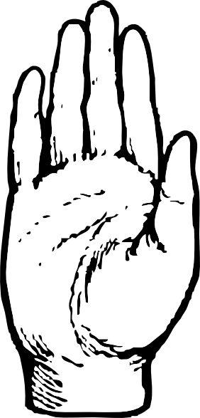 282x587 Best Hand Clipart Ideas Doodle Ideas, Floral