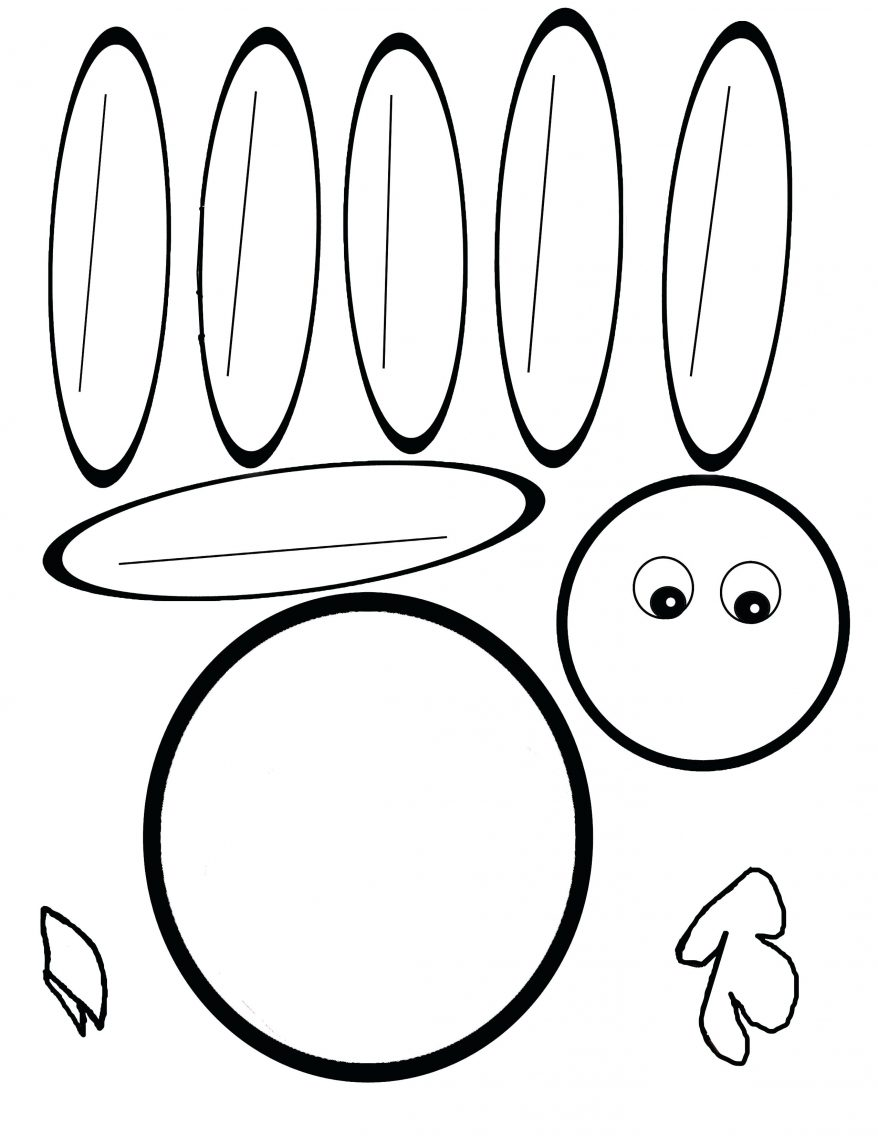 878x1136 Turkey Body Coloring Page 9 Outline 78 Extraordinary Of Template