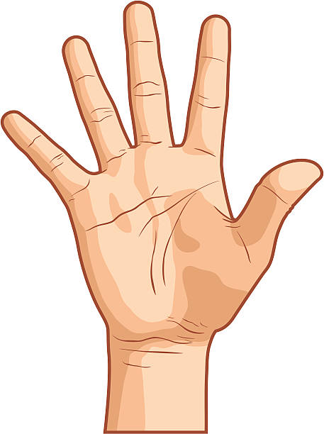 457x612 Clip Art Open Hands