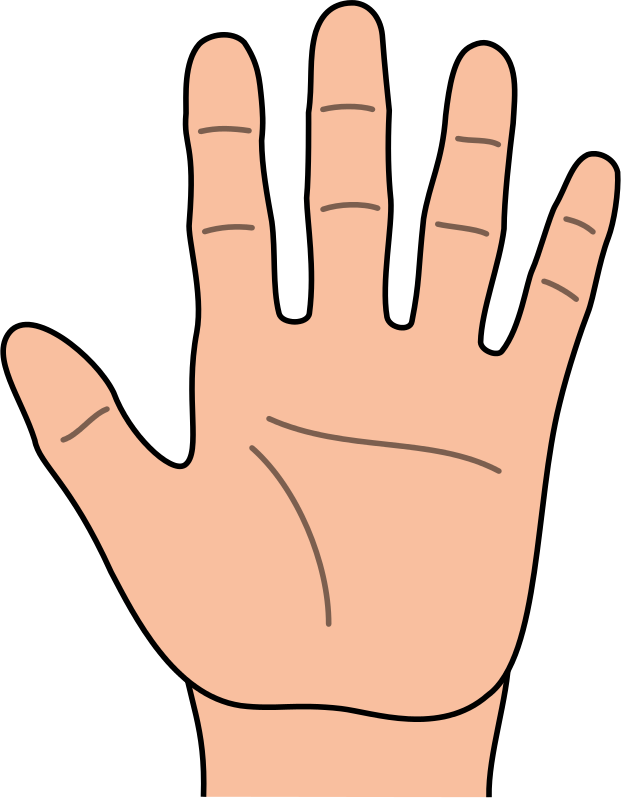 621x800 Hands Hand Outline Clipart Kid